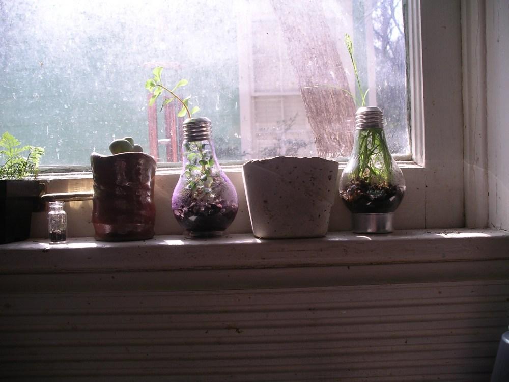 Bulb planters... (1/3)