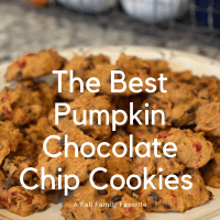 Pumpkin Chocolate Chip Cookies: A Fall Family Favorite