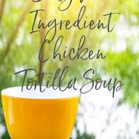 Easy Four-Ingredient Chicken Tortilla Soup