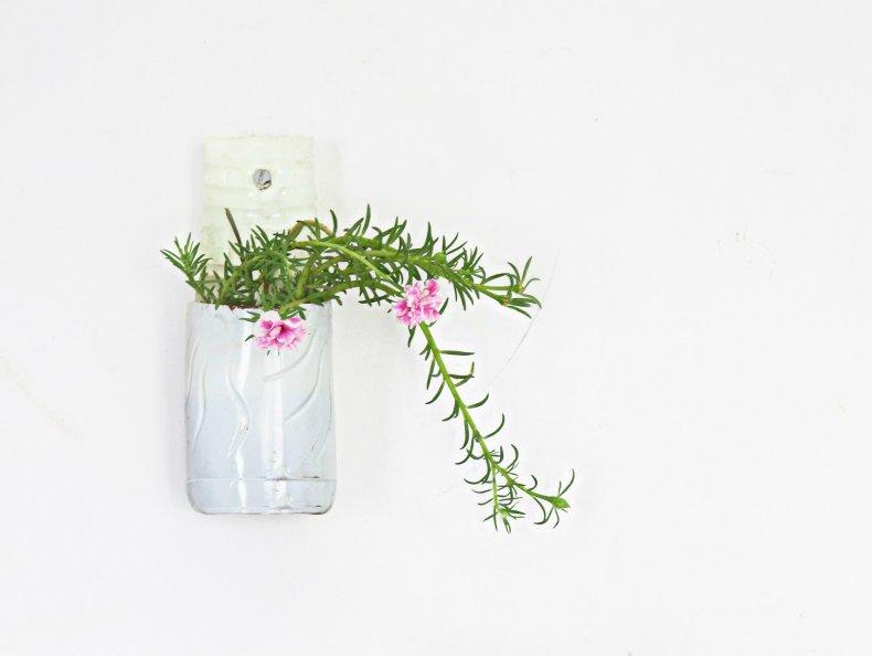 plastic bottle planter 5