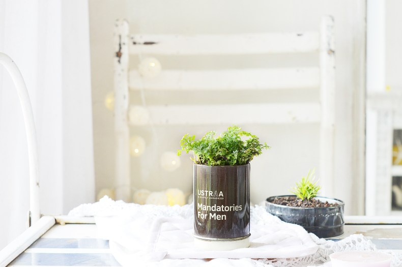 DIY Tin Can Planter 3