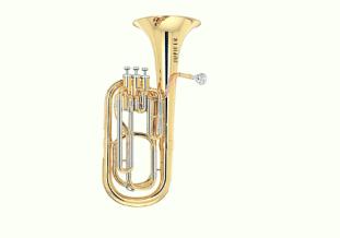 Jupiter Trumpet