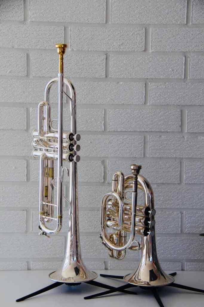Odd Trumpets