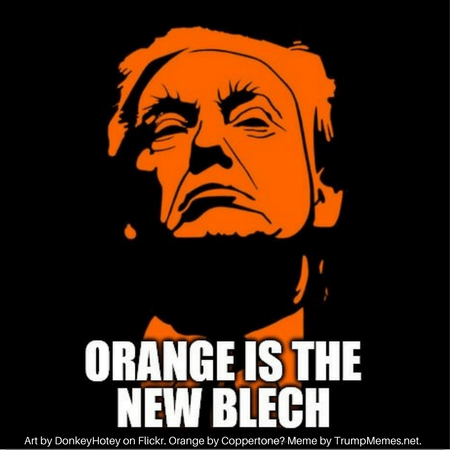 Orange Trump.png