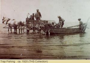 Trap-1920