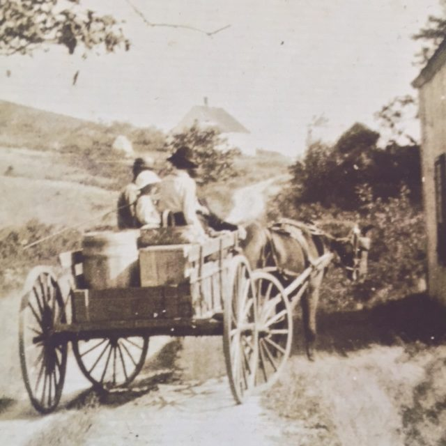 Horse and cart with family