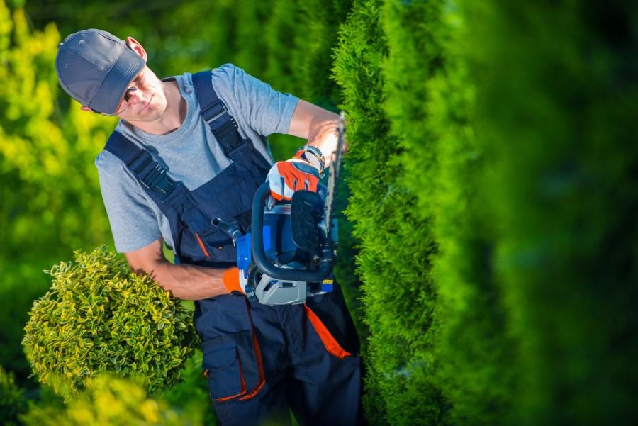 Hedge Trimmer Works
