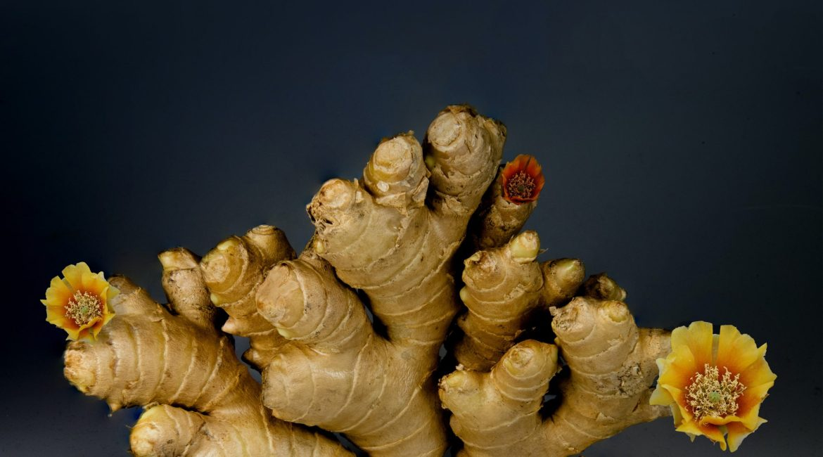Turmeric and Ginger: Benefits Beyond Fighting Inflammation? 2
