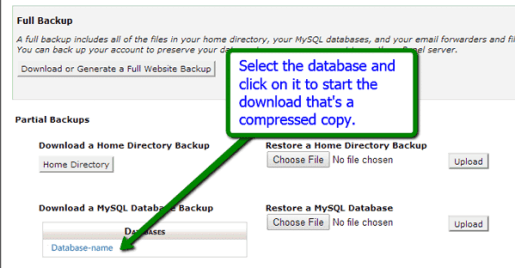 How to Download Database from cPanel
