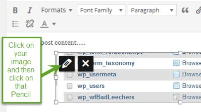 WordPress image link new window