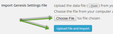 Import WordPress theme settings