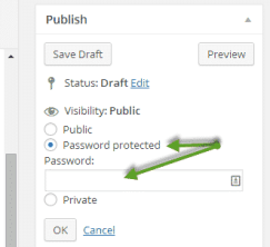 Password protect blog post