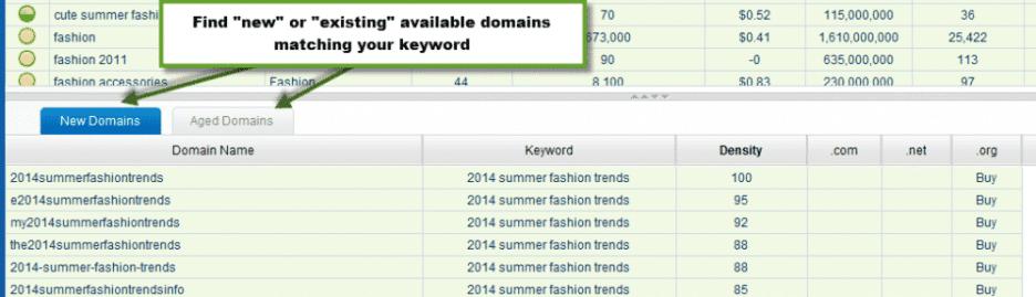 niche domain finder