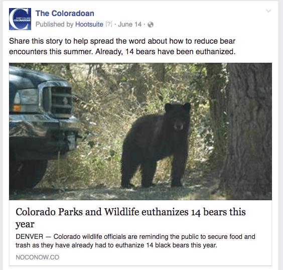 CO bears