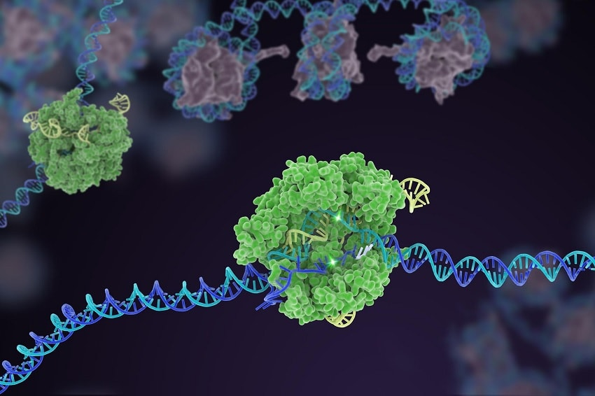 New version of the CRISPR genetic tool can cure viral
