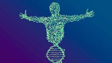 Le génome humain a enfin été entièrement séquencé, après 20 ans de recherche