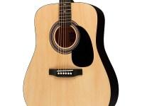Top 10 Best Acoustic Guitars