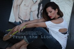 lionIMG_3240 copy copy