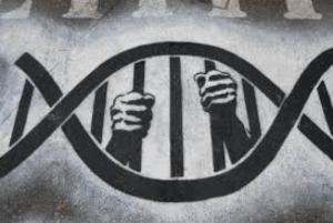 DNA Testing – Panacea or Pandora's Box
