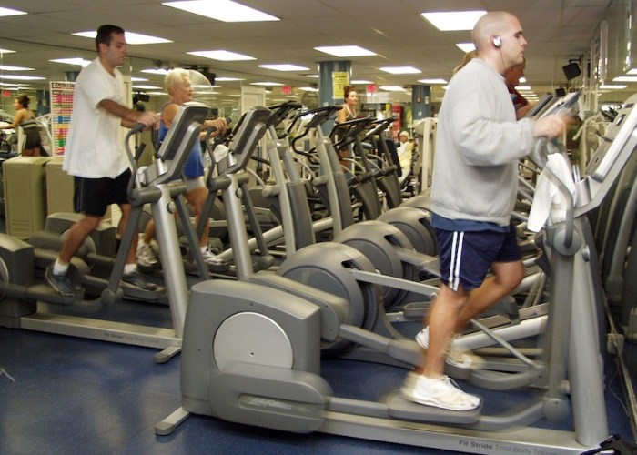 People at the gym exercising on ellipticals