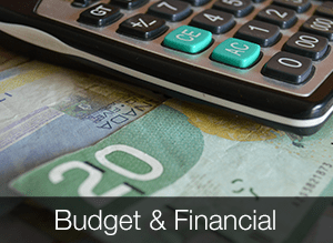 Budget and Financial Statements