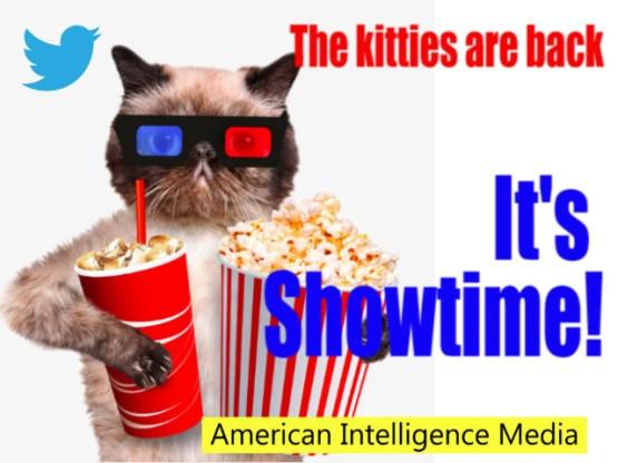 Kitties showtime