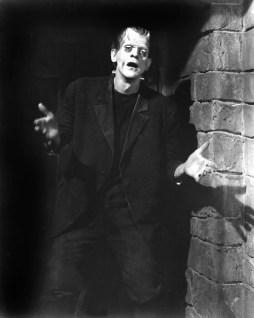 frankenstein-stills-classic-movies-19760821-1693-2112