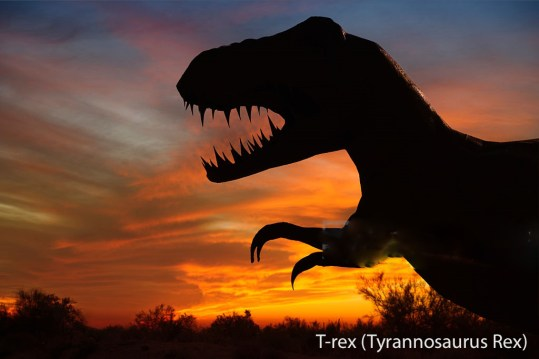 """Silhouette of dinosaur sculpture at sunset, Moab, Utah, USA"""