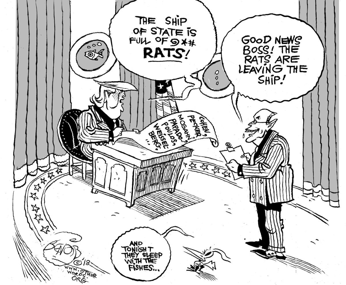 Rats Ahoy