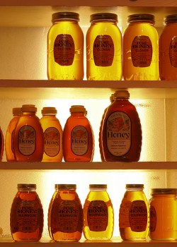 Shock finding: More than 75 percent of all 'honey' sold in grocery stores contains no honey at all, by definition (Updated)