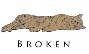 Broken PMLN