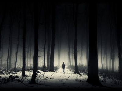 dark winter forest