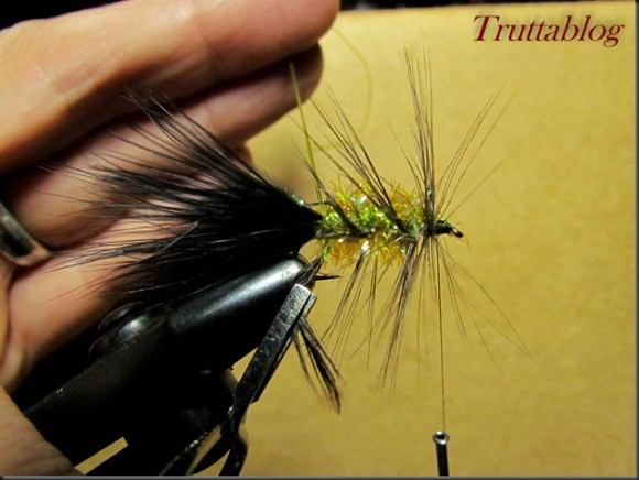 Woolly Bugger (11 of 28)