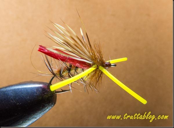 Hopper (1 of 1)-3