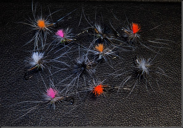 Paravhute dry flies (5 of 13)