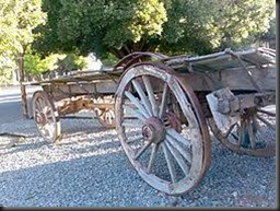 ox wagon