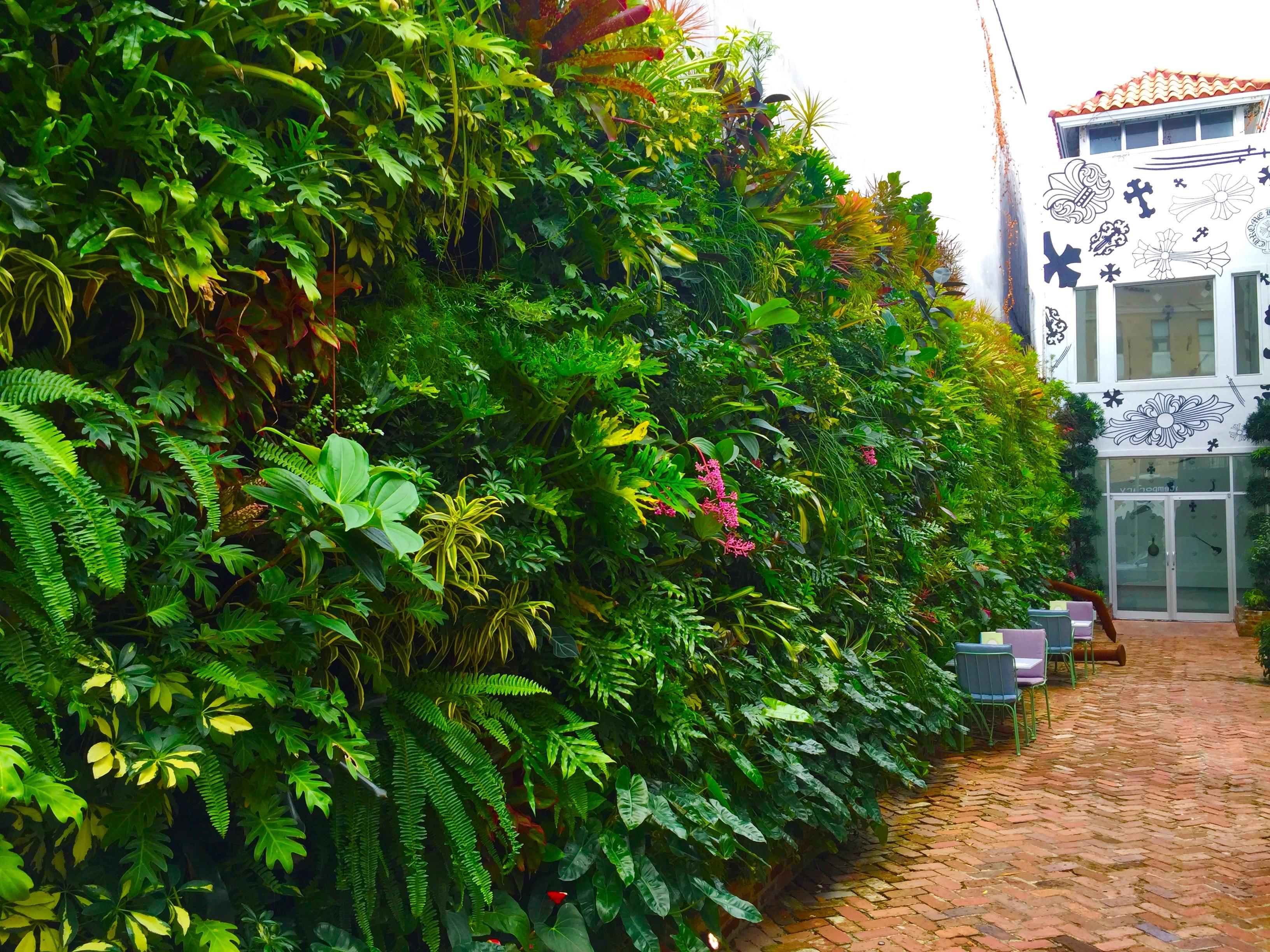 Green Wall + Live Wall – TruVine Design