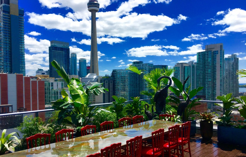 Roof top urban biophilic design In Toronto Canada By Biphilic designer Jeffrey Allis