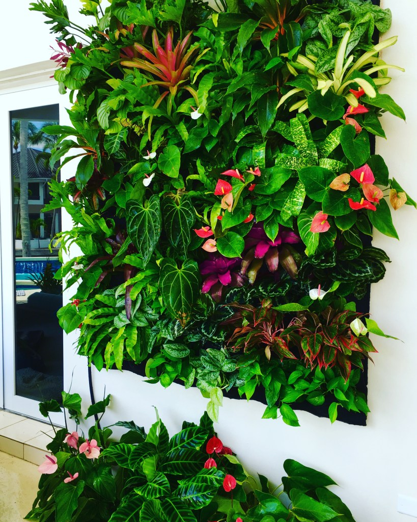 Biophilic green wall / Vertical garden Bhilic design principles By biophilic designer Jeffrey Allis / Biophillia example of green wall / Miami florida