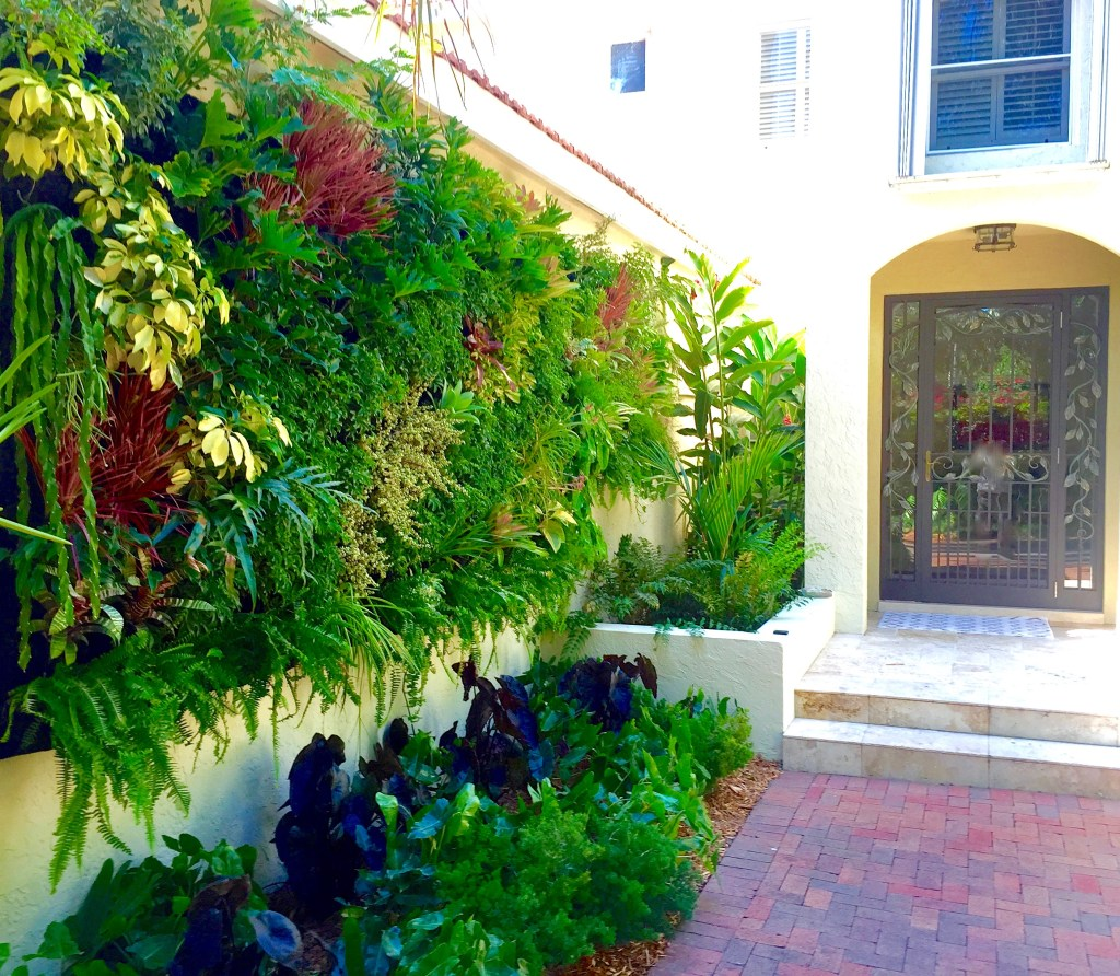 Transform your entrance with Biophilic principles Live Green wall / best vertical wall in Miami By biophilic designer Jeffrey allis In Florida