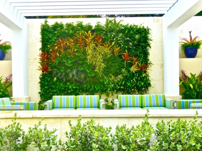 Best Vertical wall By biophilic designer, Jeffrey Allis, Miami Florida Example of biophilic Principles / Biophillia design