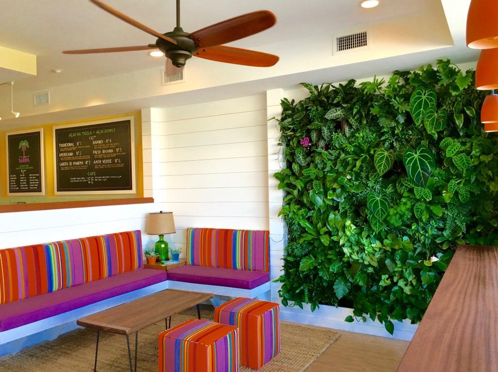 Best green wall / Miami Florida, Live wall biophilic Green wall In Florida Biophilic designer Jeffrey Allis Delray Beach Florida Biophillia design In Miami Florida