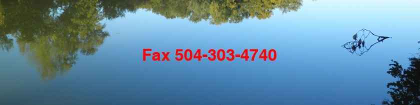 Contact Us Fax 504-303-4740