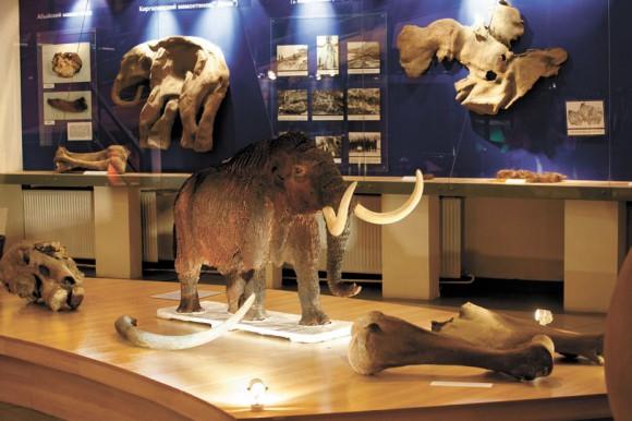 Интерьеры музея