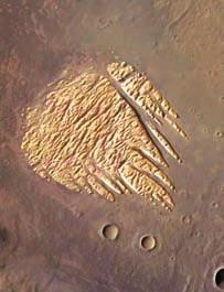 Этот отпечаток лапы с множеством когтей - выветренная осадочная порода на дне кратера.