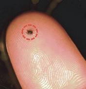 Длина одной синтетической акульей чешуйки всего 1,5 мм
