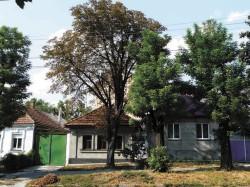 163_nikolaevuniv-5