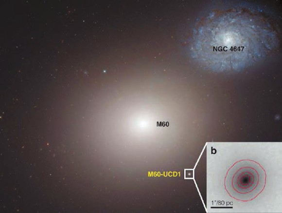 Галактика M60 и изображение ее спутника M60-UCD1 (из статьи 1409.4769)