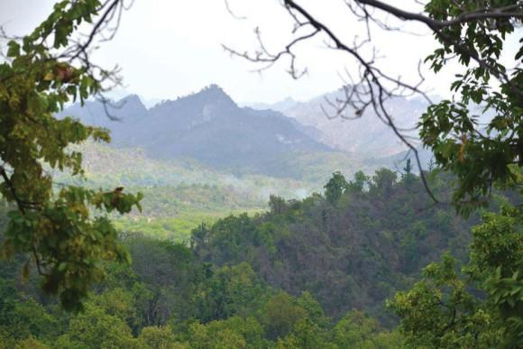 Долина Ямуны,  южное подножье Шиваликского хребта. 1 июня 2015 года