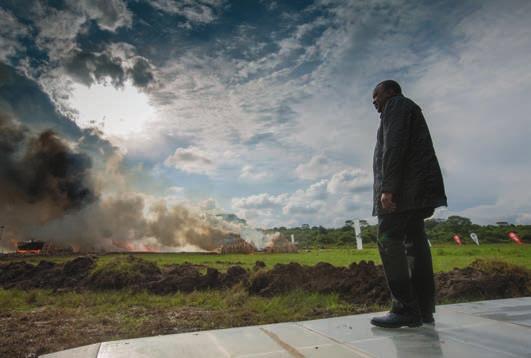 В апреле 2016 года в Национальном парке Найроби было уничтожено 105 тонн контрабандной слоновой кости (результат истребления 8 тыс. животных). За сожжением наблюдал кенийский президент Ухуру Кеньята. Фото Mwangi Kirubi